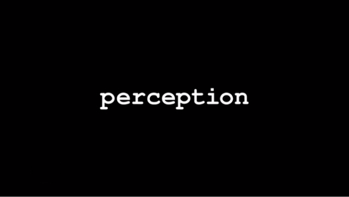 perception_intertitle