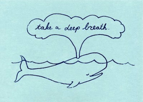 Take-a-Deep-Breath-Whale